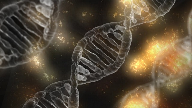 がん遺伝子治療の優れた特徴について