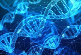 がん抑制遺伝子について