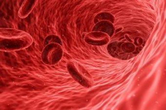 がん免疫療法 「受動免疫療法」
